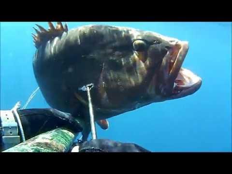 Scatola facile per inverno pescando dalle mani