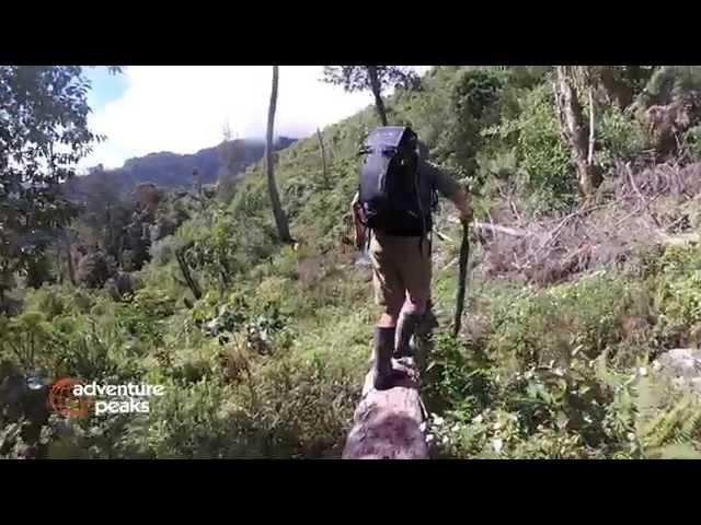 sportourism.id - Carstensz-Pyramid-Mendaki-Puncak-Tertinggi-di-Indonesia