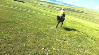 Emneg Surgaw Erdenetd 2