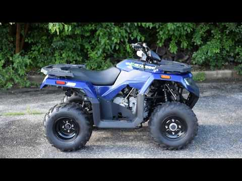 2019 Textron Off Road Alterra 300 in Wauconda, Illinois - Video 1