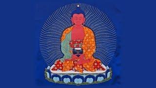 Tibetan Buddhist Pet & Animal Blessing – Amitabha Mantra – Om Ami Dewa Hri