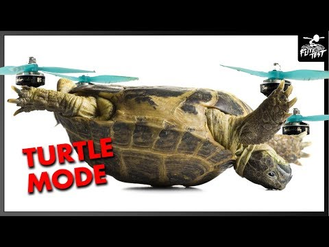 turtle-mode--how-to-flip-over-your-quad-after-crashing--flite-test