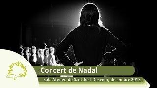 preview picture of video 'EM 2013-2014 - Funció de Nadal 2013'