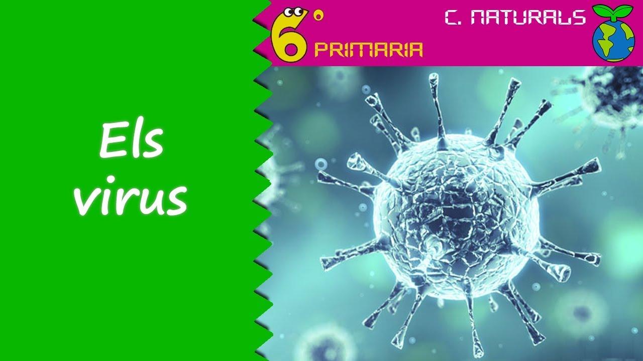 Els virus. Naturals, 6é Primària