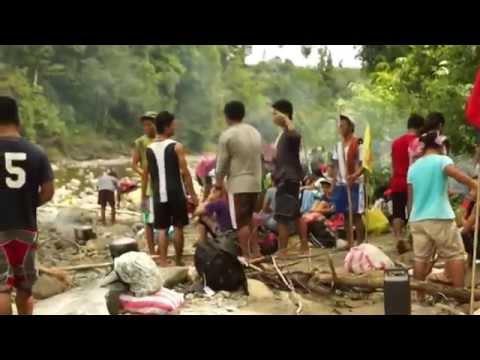 Buhok ay bumaba out bago at pagkatapos ng mga larawan