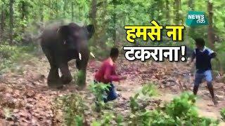हाथियों को भगाने पहुंचे ग्रामीण, गुस्साए गजराज और दौड़ा लिया | BIG STORY | NewsTak