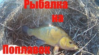 Рыбалка в волгоградской области на поплавочную удочку