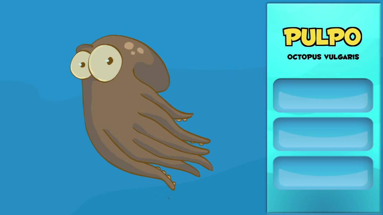 Cuáles son los animales marinos más rápidos.8