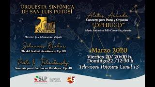 Serenata para Cuerdas en Do Mayor, Op. 48, Piotr Ilich Tchaikovsky