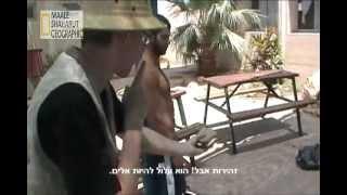 preview picture of video 'מעלה שחרות לה - היבניק המצוי'