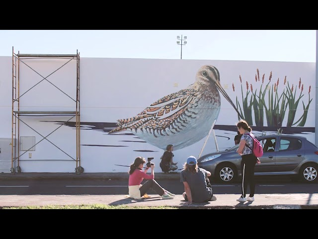 Nature is Home: Snipe Mural Time-Lapse