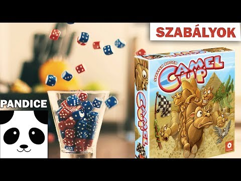 Camel Up (tevefutam) társasjáték szabályok - PanDice
