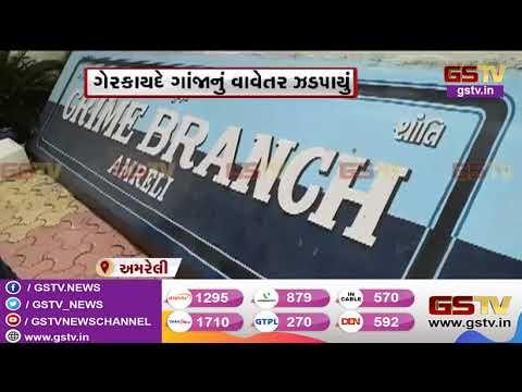 Surendranagar : ધોળી ધજા પુલ તૂટી જતા શહેરીજનોને ભારે હાલાકી | Gstv Gujarati News