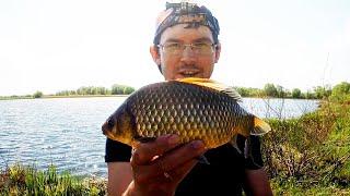 Клев рыбы в балахне