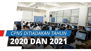 Menpan RB Tjahjo Kumolo Pertimbangkan Anggaran Pemerintah, CPNS Ditiadakan di Tahun 2020 dan 2021