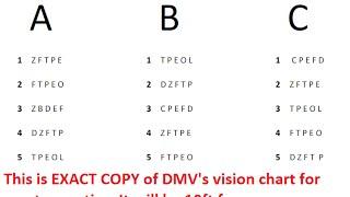 florida drivers license test dmv