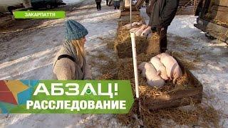 Где отдохнуть в Карпатах без обдираловки Ч.3 - Абзац! - 29.12.2016