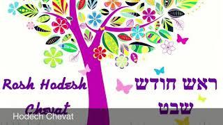 16 - Roch Hodech Chevat Mevorah