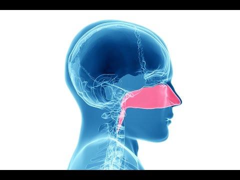 Vitamina nel dolore al collo