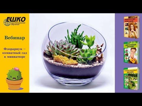 Флорариум - комнатный сад в миниатюре.