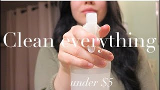 4 DIY CLEANERS UNDER $5 FOR THE ENTIRE HOUSE | SAFE & MINIMAL |