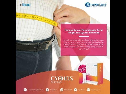 Program siap untuk menurunkan berat badan di gym