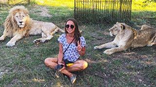 Black Sea Holidays #5. American girl vs. Russian lions!