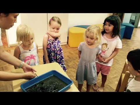 Die Würmer bei den Kindern des Fotos des Bildes der Würmer