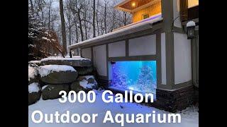 Complete Build of 3000 gallon indoor/outdoor saltwater fish tank - SPEEDBUILD
