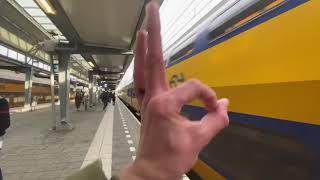 Rozet Arnhem x CREUS Italy