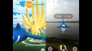 【Pokemon GO】神獸蓋歐卡VS九尾團體戰與收服第三代稀有寶可夢巨牙鯊! [精靈寶可夢GO]