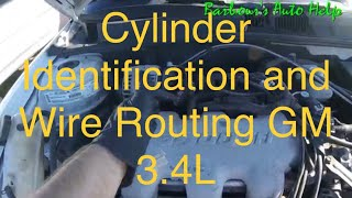 Cylinder Identification and Wire Routing GM 3.4L