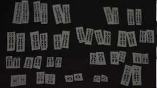 The Human Karyotype (Biology Homework)