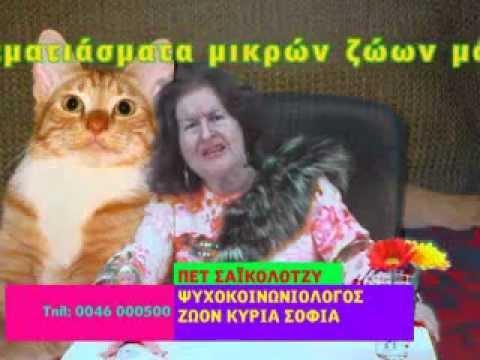 Καλύτερα βάλε Nova! - Ψυχοκοινωνιολόγος ζώων (2009)