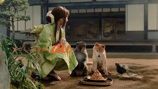 """au三太郎CMシリーズ犬、猿、キジ役に「一発屋」?波田陽区らが""""出番の少なさ""""嘆く"""