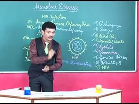 Video Microbial Diseases, lecture video for 10th std  by Bindusar Hosamani