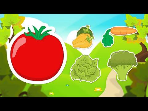 Learn Vegetables in Arabic for Kids - تعليم أسماء الخضروات للاطفال باللغة العربية