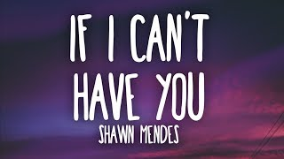 Shawn Mendes If I Cant Have You