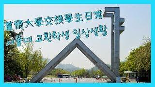 서울대 교환학생 일상생활