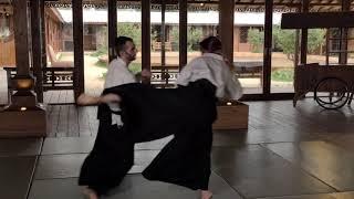techniques sur attaques pieds