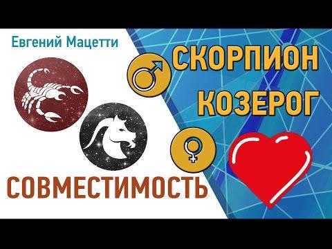 Скорпион и Козерог. Гороскоп совместимости ♥ Любовный и сексуальный гороскоп