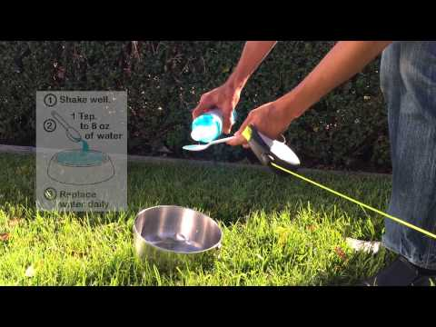 Ora-Clens Water Additive for Dogs & Cats (16 fl oz) Video