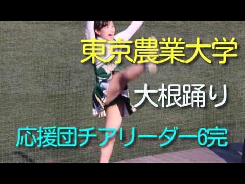 熱演の応援団チアリーダー 大根踊り 東京農業大学 6完