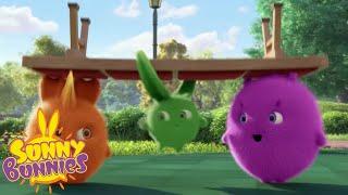 Cartoons For Children | SUNNY BUNNIES - Showtime! | New Episode | Season 4 | Cartoon