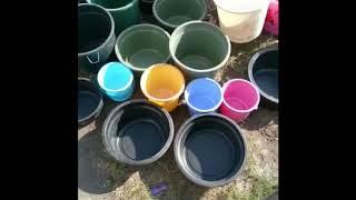 Akhirnya dusun Sajang mendapat air bersih!