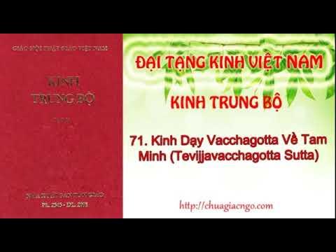 Kinh Trung Bộ - 071. Kinh Vacchagotta về tam minh
