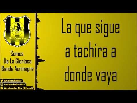 """""""Somos de la gloriosa banda aurinegra"""" Barra: Avalancha Sur • Club: Deportivo Táchira • País: Venezuela"""