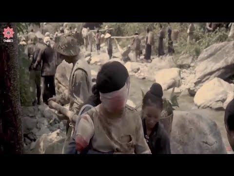 War In Jungle Movies