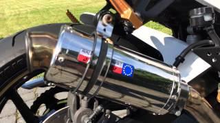 Kawasaki ZR750 Dominator