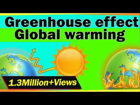 Ecosystem - Environmental Studies pencarian Terbaru